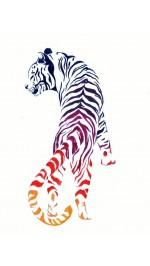 Фън шуй Сувенири за Дома за 2022 годината на Черния Воден Тигър